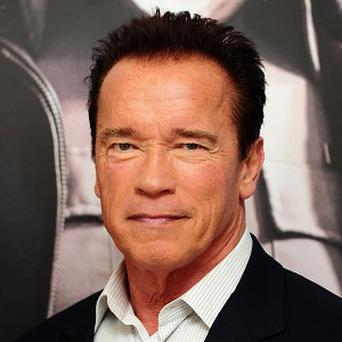 Arnold Schwarzenegger could play the bad guy in Avatar 2