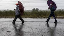 Workers, wearing face masks to protect against coronavirus, hold umbrellas as they walk home from work in Kwa-Thema, east of Johannesburg (Themba Hadebe/AP)