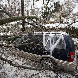 A downed tree covered in ice lying on top of a minivan after a winter storm in Philadelphia (AP)