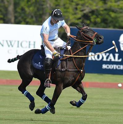 Prince Harry at the Greenwich Polo Club, Connecticut
