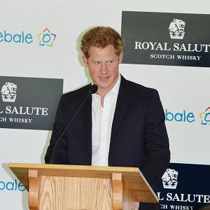 Prince Harry speaks at the Greenwich Polo Club in Connecticut, the US