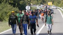 A group of migrants walking on the road near Bezdan, Serbia, towards Croatia. (AP)