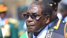 Robert Mugabe said Zimbabweans should protect their natural resources from foreign 'vandals' (AP)