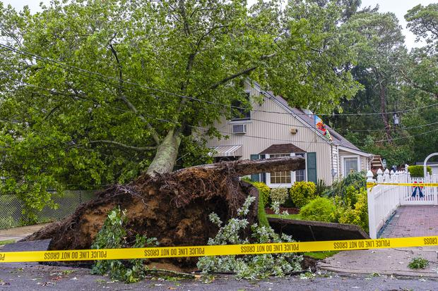 A tree toppled on to a home in West Hempstead, New York (Jeff Bachner/Newsday/AP)