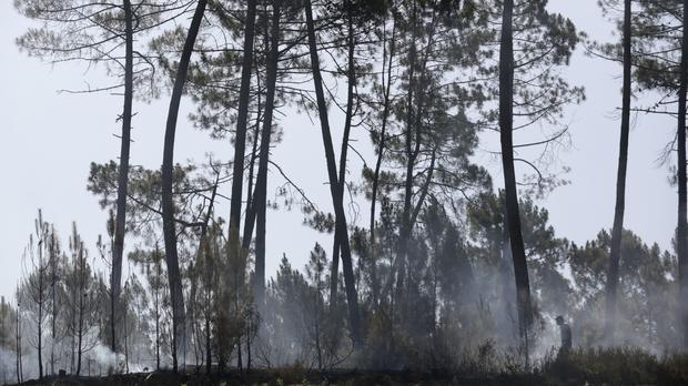 The two blazes blackened about 40,000 hectares (99,000 acres) of woodland, officials said (Armando Franca/AP)
