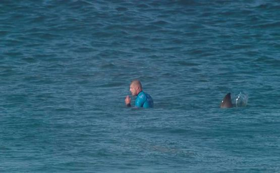 Mick Fanning with the shark fin behind him