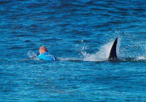 Mick Fanning about to be attacked by the shark