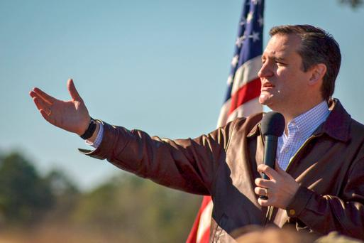 Republican presidential candidate Ted Cruz speaks to crowds during a campaign rally at Ottawa Farms in Bloomingdale, Georgia. Photo: Getty Images