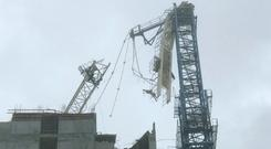 This crane at a building site collapsed on to the street below in Miami. Photo: AP