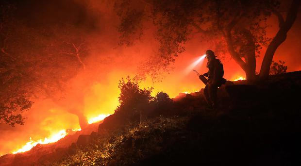 A firefighter monitors a flare-up at the head of a wildfire in Sonoma, California. Photo: AP