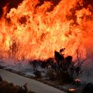 A firefighter is dwarfed by the massive Thomas wildfire north of Los Angeles, near Ojai. Photo: Reuters