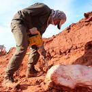 An Argentine investigator works on the dig site near Marayes in San Juan province where the bones of Ingentia prima were found. Photo: Getty