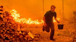 Alex Schenck attempts to fight the wildfire at his home near Clearlake Oaks, California. Photo: Getty