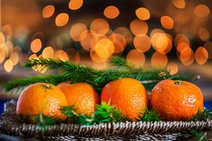 Fresh Clementines or Tangerines, Xmas Lights and Xmas Tree Branch (gettyimages)