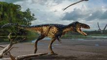 A discover of a tail piece from a species related to tyrannosaurus rex had feathers