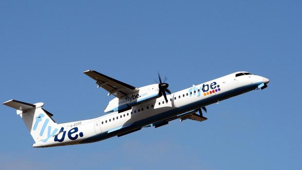 The Flybe flight was forced to turn back on itself after the bee became lodged in one of the aircraft's instruments
