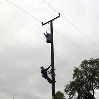 Engineers saved a cat from the top of a 10-metre electricity pole in St Cyrus, Aberdeenshire