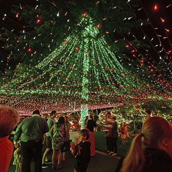 People look at the Richards home illuminated with miniature lights in Canberra (AP/AAPIMAGE, Alan Porritt)