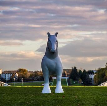 A plain sculpture of a horse at Hamilton racecourse before it is painted for the art project Ready Steady Gallop! by Wild in Art