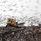 A landfill site is currently housing a fortune in bitcoins mistakenly thrown away on a hard drive