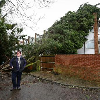 Heidi Brett, outside her home where a leylandii tree which fell onto her house on Christmas Eve has still not been moved