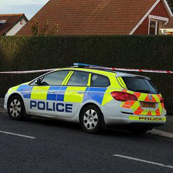 Police cars in Nottinghamshire could carry adverts under plans to raise revenue