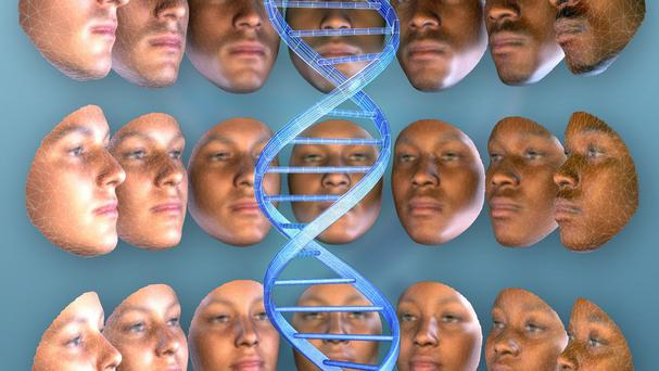 A Penn State University image showing the range of variation in faces for both sex and ancestry (Shriver/Claes/Penn State/PA)