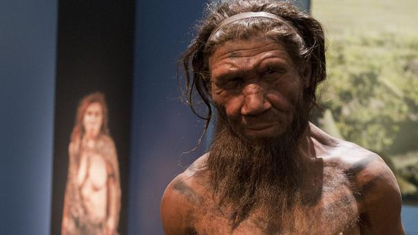 It is likely Neanderthals disappeared 40,000 years ago because of interbreeding and assimilation with early modern humans, scientists believe