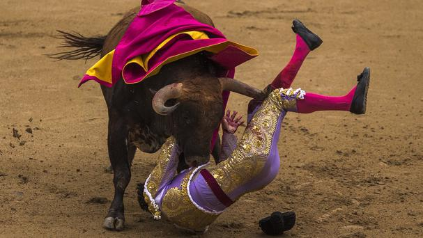 Spanish bullfighter Antonio Nazare is tossed by a Los Chospes ranch fighting bull at Las Ventas bullring in Madrid (AP)