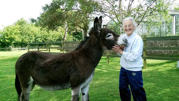 Jaffa the donkey with his owner Mary Beetham, after Jaffa scared off a would-be burglar by braying loudly