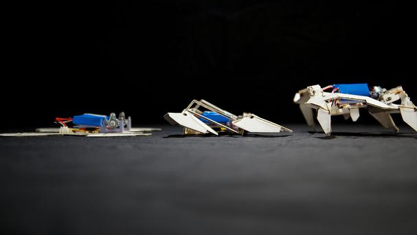 A small shape-changing robot created by scientists who were inspired by the Japanese paper-folding art of origami. (Wyss Institute/PA)