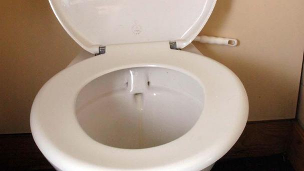 Firefighters had to free a little boy who got his head stuck in a toilet trainer seat