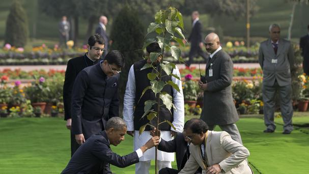 Barack Obama, left, planted the tree at the Mahatma Gandhi Memorial in New Delhi. (AP)