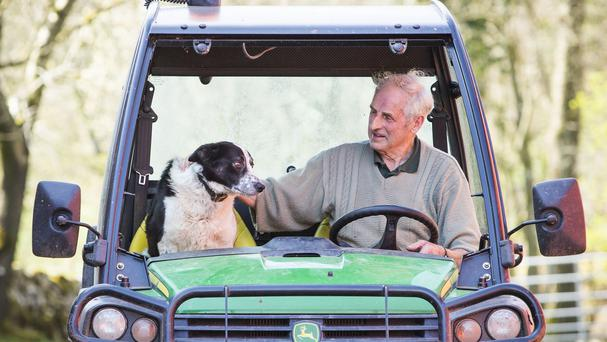 Tom Hamilton and Don the dog at Kirkton Farm in Abington, South Lanarkshire, after tailbacks were caused on a busy motorway