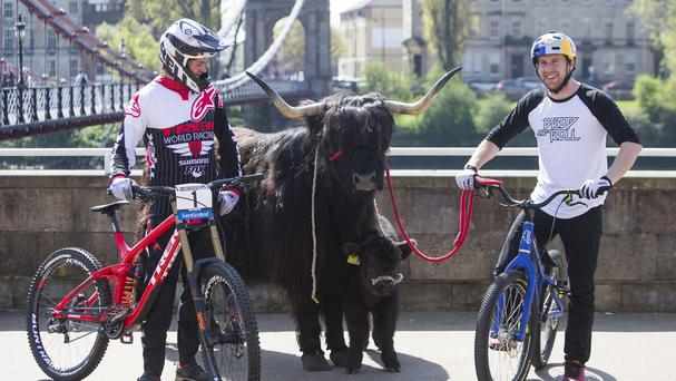 Danny MacAskill (right) and Scottish downhill champion Greg Williamson with Daisy the Highland Cow in Glasgow to promote this year's Fort William Mountain Bike World Cup