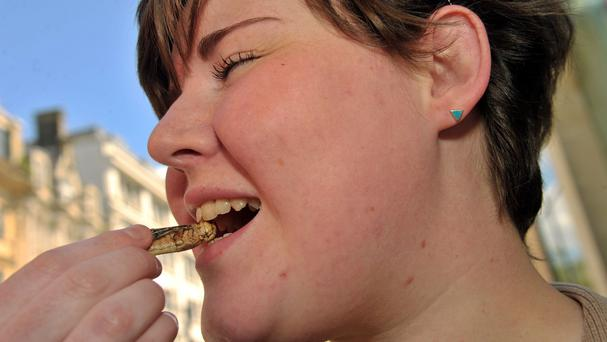 Leah Ellison, 22, tucks into a salt and vinegar-flavoured locust at a so-called 'Pestaurant' food stall in Cardiff (Richard Swingler/PA)