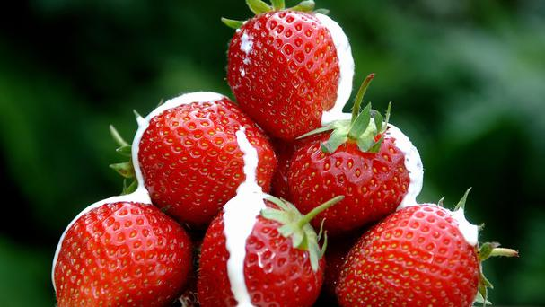 Strawberries and cream are a Wimbledon tradition