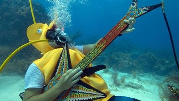 Jeff Wright, dressed as a seahorse, rocks with a fake guitar during the Underwater Music Festival (Florida Keys News Bureau/AP)