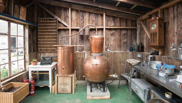 An old hen house with a gin distillery, farm shop and ladies' waiting room which has been crowned Shed of the Year.