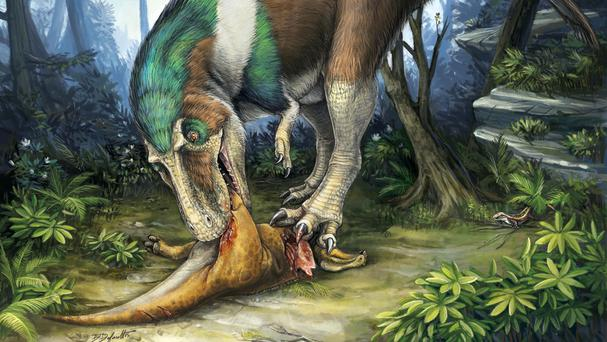 An artist's impression of a Gorgosaurus feeding on a young Corythosaurus in Alberta, Canada, 75 million years ago (University of Toronto/PA)