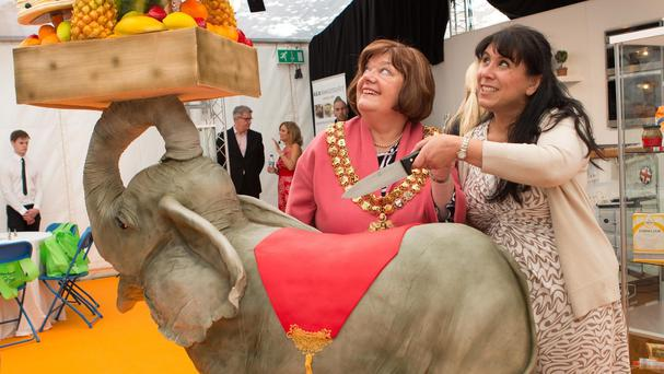 An elephant cake called Kimmy at Bolton's annual food and drink festival in the town centre (Bolton Council/PA)