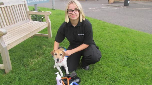 Rio meets Scottish SPCA worker Mica Sinforiani (PA/Scottish SPCA)