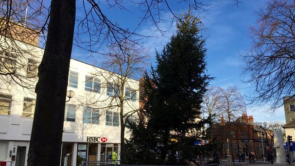 A Christmas tree in Beeston, Nottinghamshire that leans