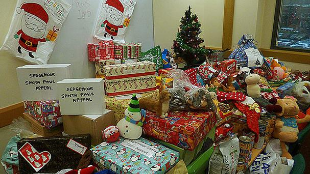 Some of the toys that have been received by the council after a plea for gifts for dogs which will spend Christmas in kennels (Sedgemoor District Council/PA)