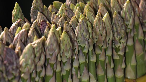 Asparagus usually appears in April