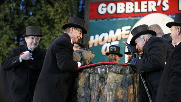 Punxsutawney Phil predicts an early spring during the 129th celebration of Groundhog Day. (AP)