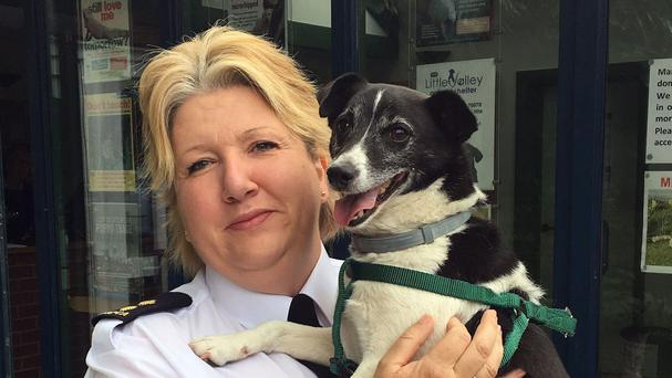 RSPCA Inspector Beccy Wadey with Jack