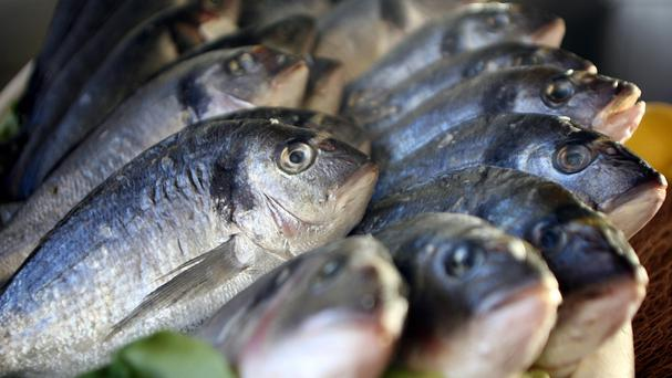 Thousands of fish have been killed.