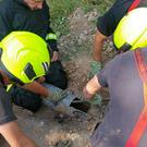 Firefighters rescue a dog that got stuck down a drainpipe in Easton, Somerset (Devon and Somerset Fire Service/PA)