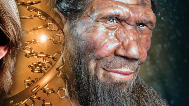 The Neanderthals, who once colonised Europe and Asia, became extinct about 30,000 years ago (Vanderbilt University/PA)